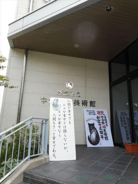 a11_R.JPG