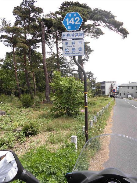 m5_R.JPG